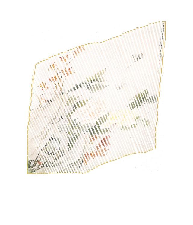 Remains(22x24cm)web
