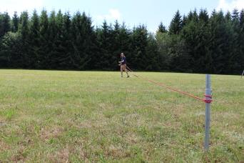 field tracing (making, SB4).JPG
