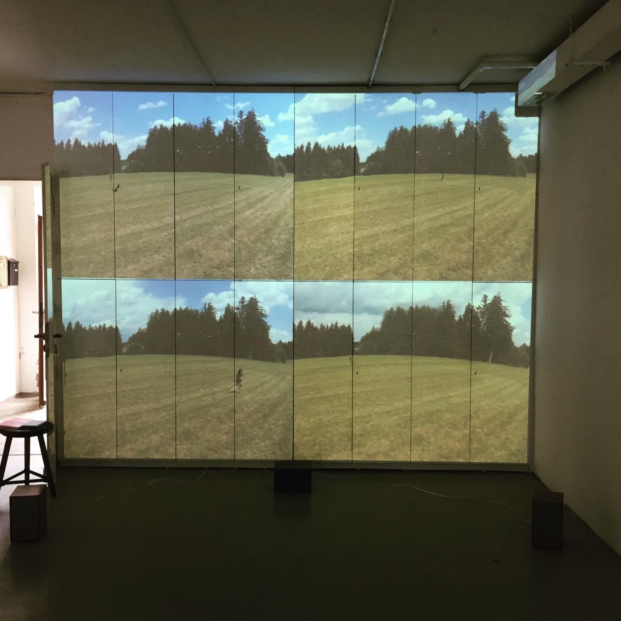 Field Tracing (video)2